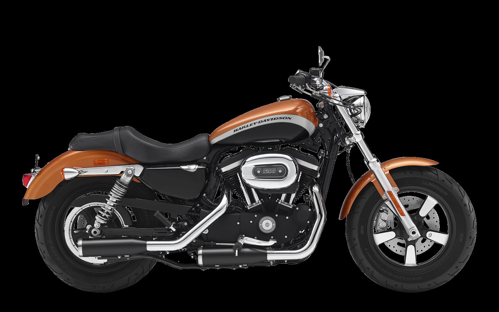 Sportster - 1200 Custom - XL - 2017-2020 - Endtöpfe