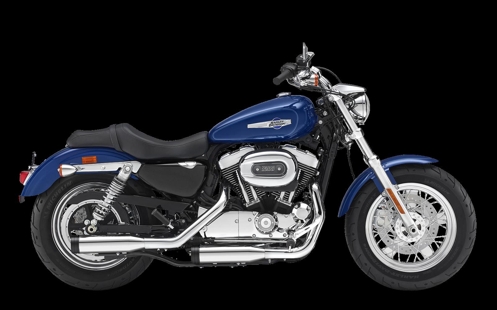 Sportster - 1200 Custom - XL - 2014-2016 - Endtöpfe
